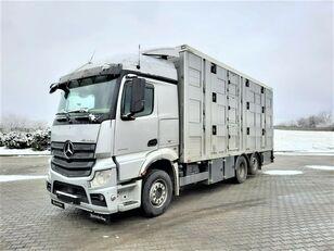 MERCEDES-BENZ Actros 2543 6x2 Viehtransporter LKW